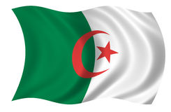 Algeria Flag. Isolated on white background Royalty Free Stock Images