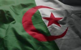 Algeria Flag Rumpled Close Up.  stock photography