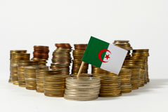 Algeria flag with stack of money coins. Algeria flag waving with stack of money coins Stock Image