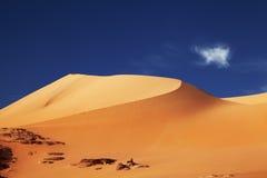 algeria öken sahara Arkivfoto
