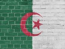 Algeria Politics Concept: Algerian Flag Wall. Background Texture stock photos