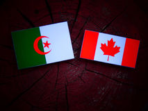 Algerian flag with Canadian flag on a tree stump isolated Royalty Free Stock Photo