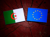 Algerian flag with EU flag on a tree stump isolated. Algerian flag with EU flag on a tree stump Royalty Free Stock Images