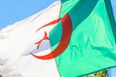 Algerian flag Royalty Free Stock Image