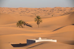 Algerian sahara Royalty Free Stock Images