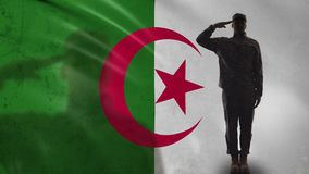 Algerian soldier silhouette saluting against national flag, military forces. Stock footage stock footage