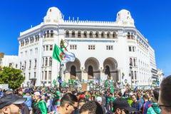 Algerijnen die tegen voorzittersBouteflika regime vertonen in Algiers, Algerije royalty-vrije stock afbeeldingen