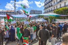 Algerijnen die tegen voorzittersBouteflika regime vertonen in Algiers, Algerije royalty-vrije stock foto's