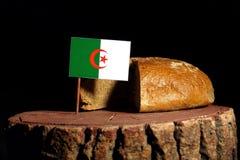 Algerische Flagge auf einem Stumpf mit Brot Lizenzfreies Stockfoto