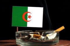 Algerische Flagge mit brennender Zigarette im Aschenbecher lokalisiert auf Schwarzem Stockfoto