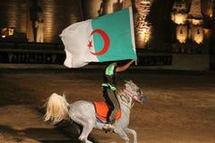 algerisk flagga Fotografering för Bildbyråer