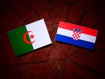 Algerisk flagga med den kroatiska flaggan på en trädstubbe Royaltyfri Foto