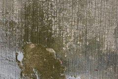 Alghe bagnate del cemento fotografie stock libere da diritti