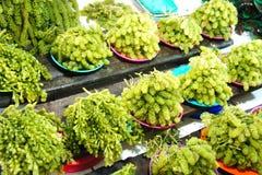 Alghe da vendere sul mercato Fotografia Stock