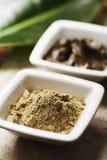 Alghe e fango immagini stock