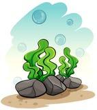 Alghe sotto il mare royalty illustrazione gratis