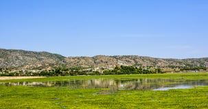 Alghe verdi sulla superficie del lago Uchali Fotografia Stock
