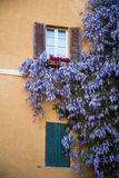 Alghero Sardinia Royaltyfria Foton