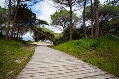Alghero, Sardinige Royalty-vrije Stock Fotografie