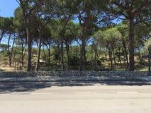 Alghero strand Royaltyfri Foto