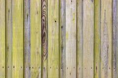 Algi deski drewniany ogrodzenie zdjęcia royalty free