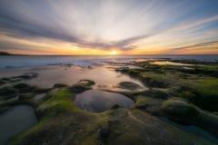 Algi zakrywali skały i przypływów basenów w losie angeles Jolla Kalifornia Zdjęcia Stock