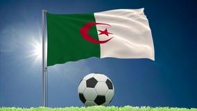 Algieria futbolu i trzepota? chor?gwiane rolki