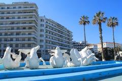 Algiers huvudstad av Algeriet Arkivfoto