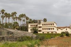 Algiers Royalty Free Stock Photos
