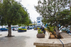 Algiers. Small garden in Algiers the capital city of Algeria stock photos