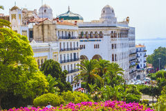 Algiers Royalty Free Stock Image