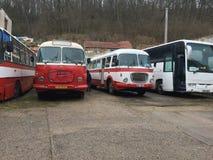 Algo del autobús y de un coche especial Imagenes de archivo