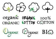 Algodão orgânico, grupo do vetor Imagens de Stock