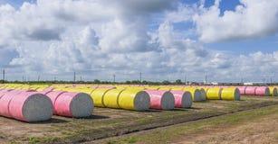Algodão Rolls no campo Texas sul EUA imagem de stock