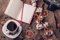 Algodão seco do café e câmera retro no estilo rústico fotografia de stock royalty free