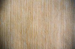 algodón Imagen de archivo libre de regalías