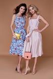 Algodón elegante de la ropa de la tendencia del diseño del desgaste del modelo de la mujer de dos bellezas imágenes de archivo libres de regalías