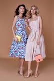 Algodón elegante de la ropa de la tendencia del diseño del desgaste del modelo de la mujer de dos bellezas imagenes de archivo