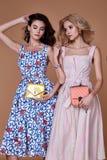 Algodón elegante de la ropa de la tendencia del diseño del desgaste del modelo de la mujer de dos bellezas fotos de archivo libres de regalías