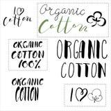 Algodón orgánico caligrafía del vector Fotos de archivo libres de regalías