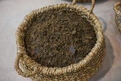 Algodón orgánico mullido blanco escogido en la cesta de mimbre, primer fotos de archivo