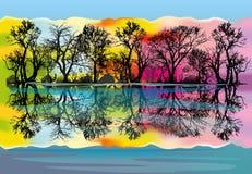 algonquin δασικό λιμνών του Καναδά φθινοπώρου Οντάριο πάρκο Οκτωβρίου επαρχιακό ελεύθερη απεικόνιση δικαιώματος
