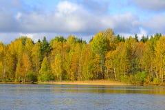 algonquin δασικό λιμνών του Καναδά φθινοπώρου Οντάριο πάρκο Οκτωβρίου επαρχιακό Στοκ Φωτογραφία