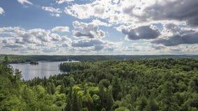 Algonquin επαρχιακό πάρκο, ΕΠΑΝΩ, Καναδάς απόθεμα βίντεο