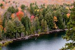 algonquin πάρκο λιμνών γρύλων Στοκ εικόνες με δικαίωμα ελεύθερης χρήσης