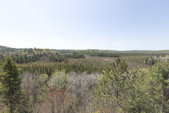 Algonquin πάρκο, σκηνή του Οντάριο - του Καναδά Στοκ Εικόνες