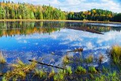 algonquin πάρκο του Καναδά Στοκ Εικόνες