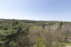 Algonquin πάρκο, χρόνος άνοιξη του Οντάριο - του Καναδά Στοκ Εικόνες