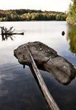 Algonquin πάρκο Muskoka Οντάριο Στοκ εικόνες με δικαίωμα ελεύθερης χρήσης