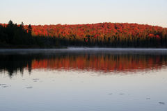 Algonquin Dawn Stock Photography